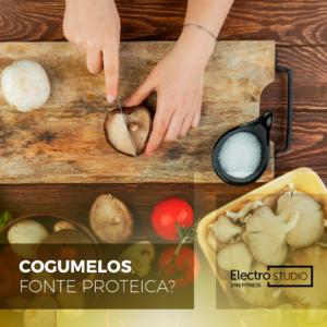 Cogumelos, fonte proteica?